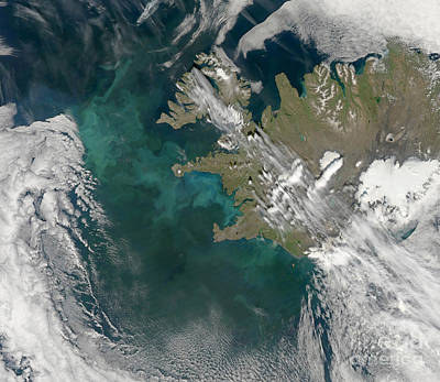 Phytoplankton Bloom In The North Poster by Stocktrek Images
