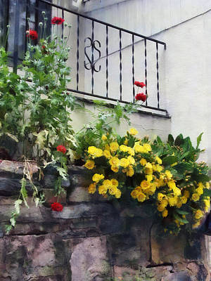 Planter With Yellow Flowering Cactus Poster by Susan Savad