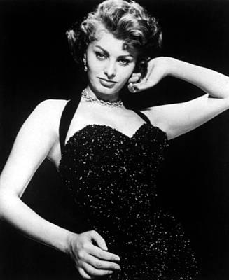Publicity Shot Of Sophia Loren Taken Poster by Everett