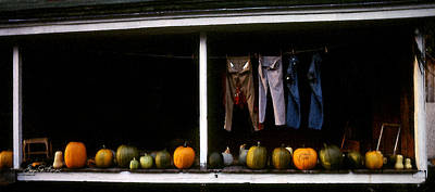 Pumpkins And A Washline Poster by Wayne King