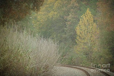 Rails Curve Into A Dreamy Autumn Poster by Lisa Holmgreen