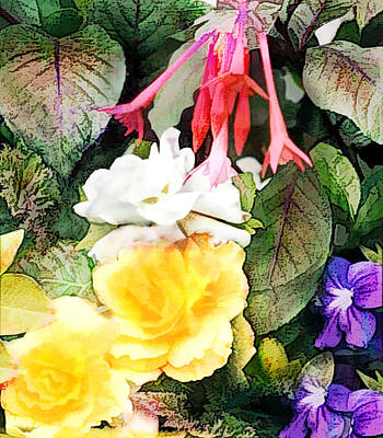 Rainbow Of Mixed Flowers Poster by Elaine Plesser