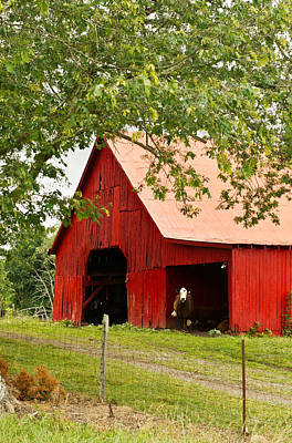 Red Barn With Pink Roof Poster by Douglas Barnett