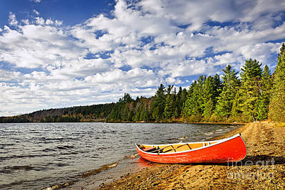 Red Canoe On Lake Shore Poster by Elena Elisseeva