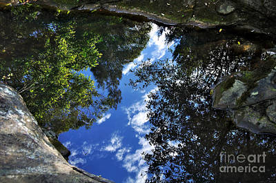 Reflections On A Pond Poster by Kaye Menner