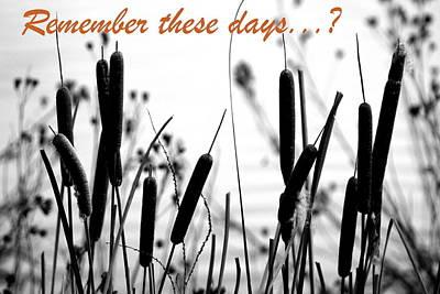 Remember The Days Poster by Deborah  Crew-Johnson