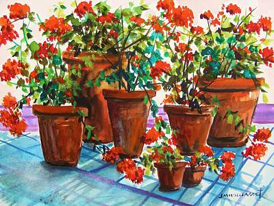 Repotted Geraniums By John Williams Poster by John  Williams