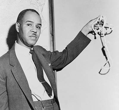 Roy Wilkins 1901-1981, Naacp Executive Poster by Everett