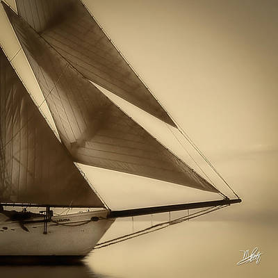 Sails Poster by Michael Petrizzo