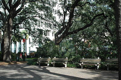 Savannah Historical District Park Benches And Trees Poster by Kathy Fornal
