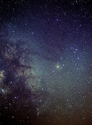 Scorpius Constellation Poster by John Sanford