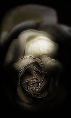 Since It Was A Rose Poster by Li   van Saathoff