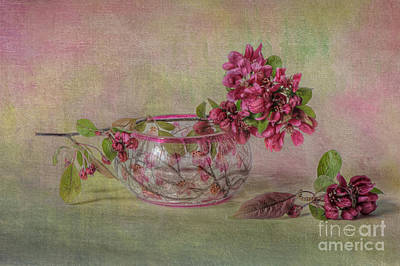 Spring Moments Poster by Jacky Parker