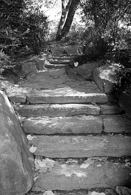 Stepping Stones In Black And White Poster by Rob Hans