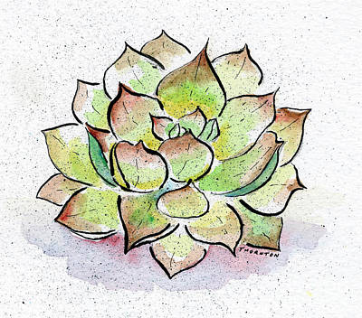 Succulent Poster by Diane Thornton