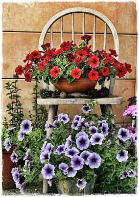 Summer Garden Poster by Julie Williams