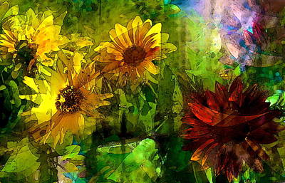 Sunflower 4 Poster by Pamela Cooper