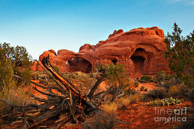 Sunrise At The Double Arches Poster by Robert Bales