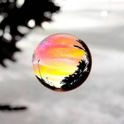 Sunset In A Bubble Poster by Marianna Mills