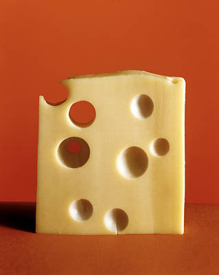 Swiss Cheese Poster by Laurie Rubin