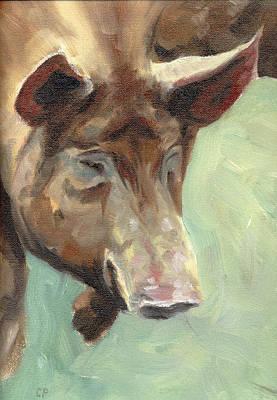 Tamworth Pig Poster by Chris Pendleton