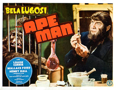 The Ape Man, Bela Lugosi, Lobbycard Poster by Everett