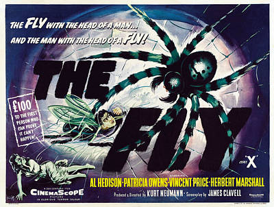 The Fly, David Hedison Aka Al Hedison Poster by Everett