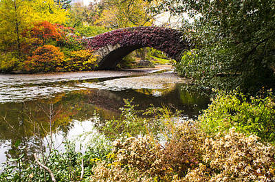 The Gapstow Bridge In Central Park In New York City Poster by Ellie Teramoto