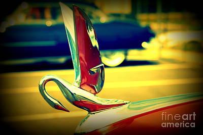 The Packard Swan Poster by Susanne Van Hulst