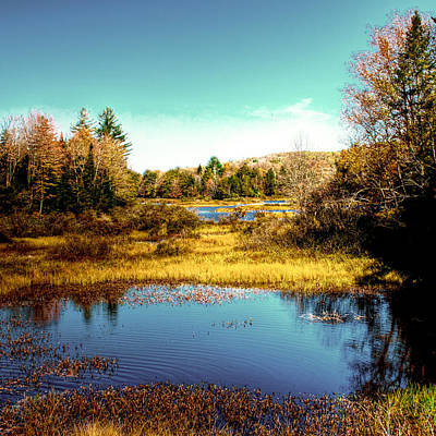 The Still Of Autumn In The Adirondacks Poster by David Patterson