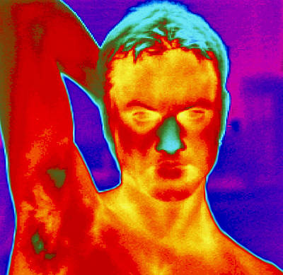 Thermogram Of A Man's Head And Shoulders Poster by Dr. Arthur Tucker