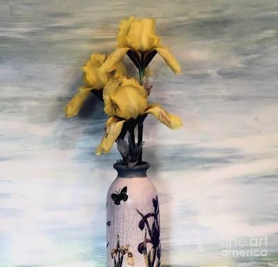Three Yellow Irises Poster by Marsha Heiken