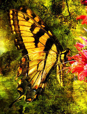 Tiger Swallowtail Butterfly Happily Feeds Poster by J Larry Walker