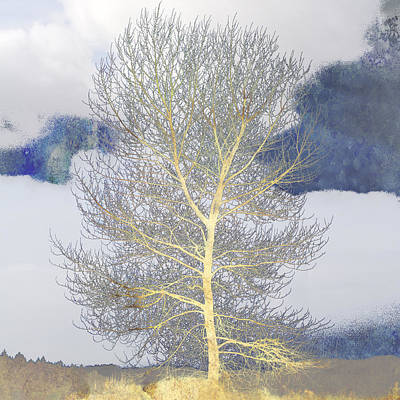 Tree And Clouds Poster by Carol Leigh