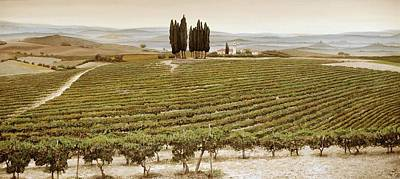 Tree Circle - Tuscany  Poster by Trevor Neal