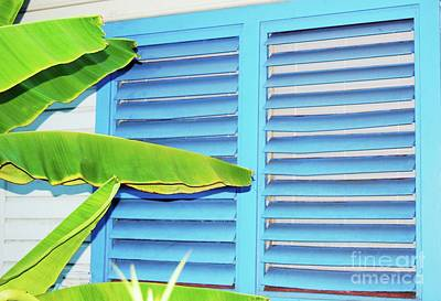 Tropical Shutters Poster by Debbi Granruth