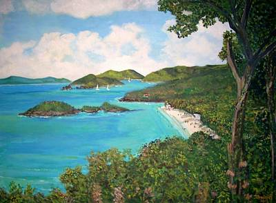 Trunk Bay Poster by Teresa Dominici