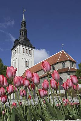 Tulips Outside Niguliste Church Poster by Axiom Photographic
