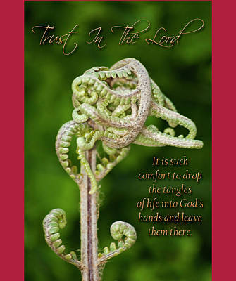 Unfurling Faith Poster by Carolyn Marshall