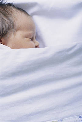 View Of A Premature Baby Asleep In A Cot Poster by Mauro Fermariello
