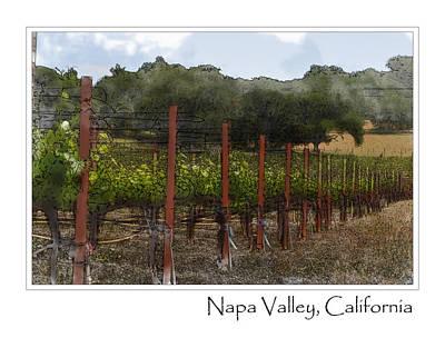 Vineyard In Summer Poster by Brandon Bourdages