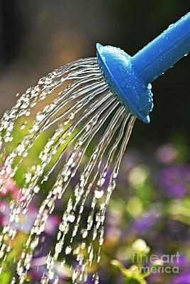 Watering Flowers Poster by Elena Elisseeva