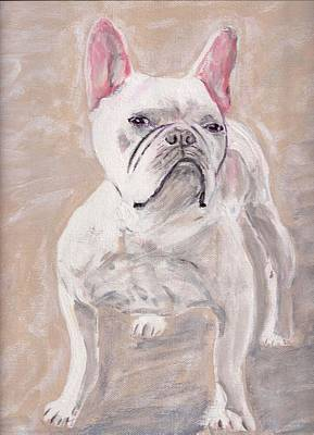 White Frenchie Poster by Arthur Rice