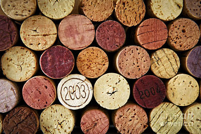 Wine Corks Poster by Elena Elisseeva