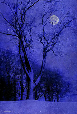 Winter Nights Poster by Ron Jones