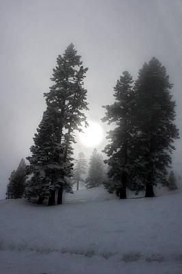Winter Sun Poster by Alex Lemus