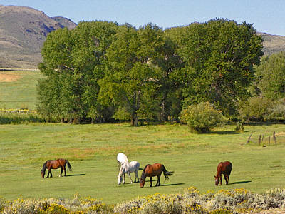 Wyoming Landscape With Horses Poster by Lenore Senior and Dawn Senior-Trask