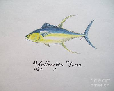 Yellowfin Tuna Poster by Jared Hester