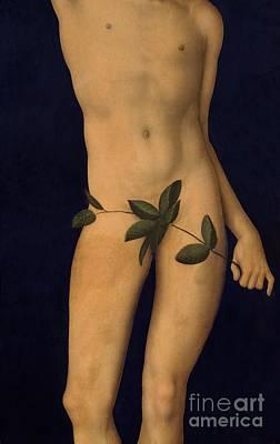 Adam Poster by The Elder Lucas Cranach