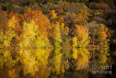 Autumn Foliage Poster by Brian Jannsen